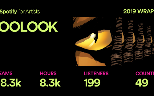 ZOOLOOK on Spotify Wrapped 2019